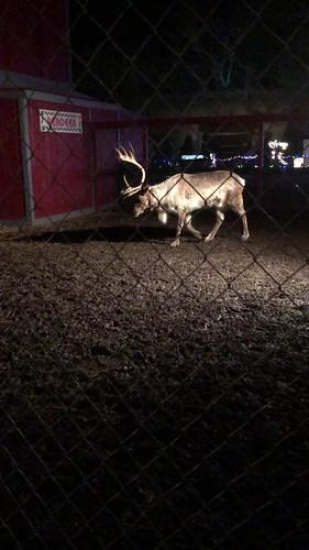v2018 Dec 2, Santa Land Video