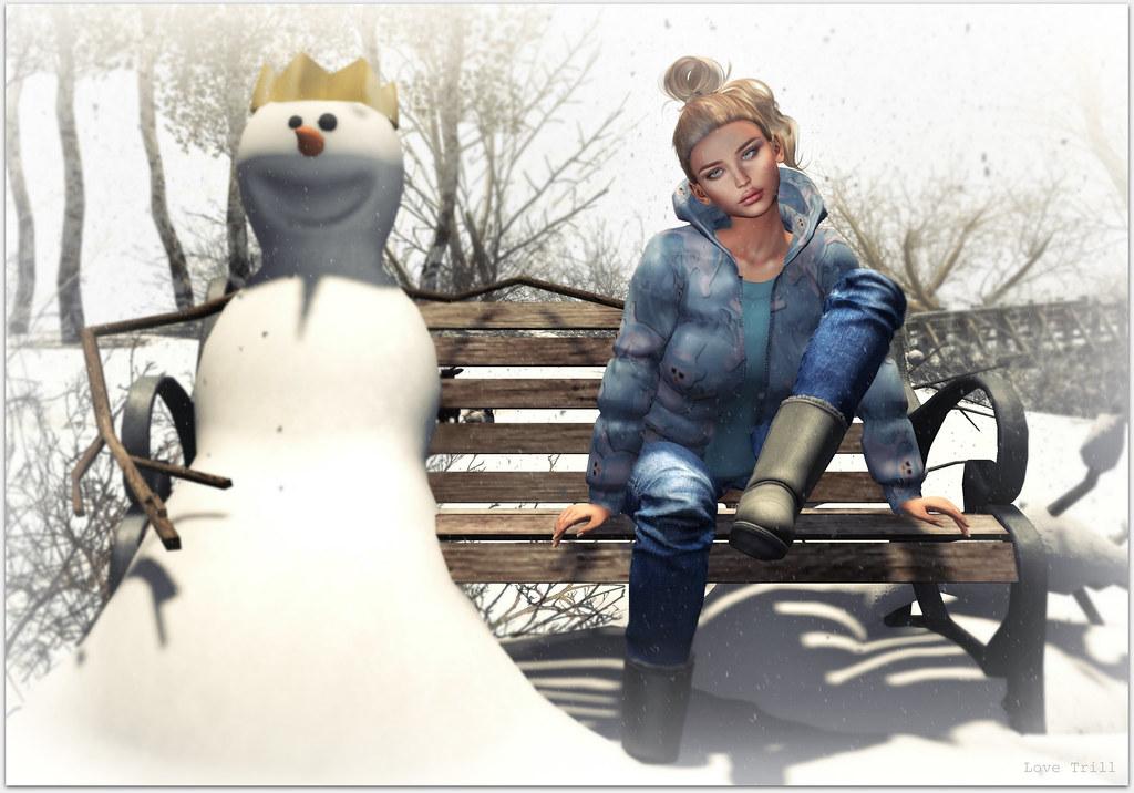 FabFree: Snow Friends
