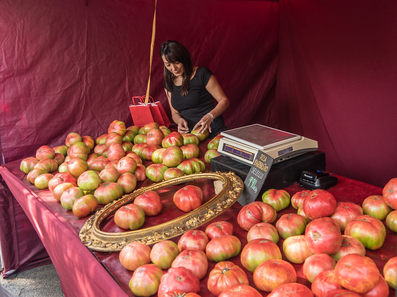 Tomates géantes... recadrage 31821668588_37688a6fd1_c
