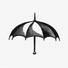 Vintage umbrella illustration
