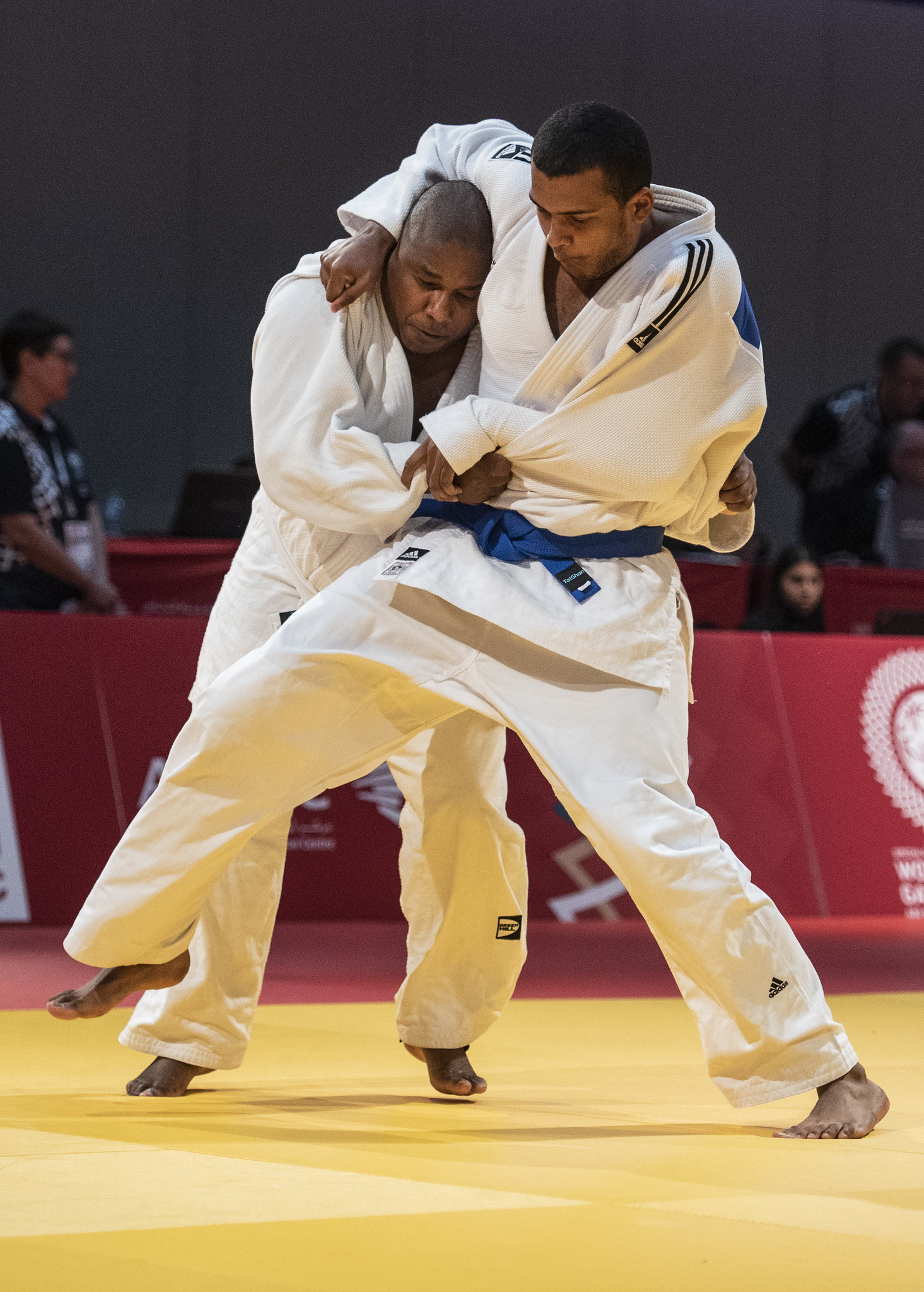 Judo, Special Olympics World Summer Games Abu Dhabi 2019