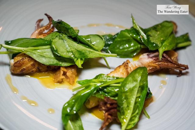 Roast squid, pumpkin, ventricinaand spinach