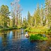 Sawtooth National Recreation Area, Twin Lakes, Outlet Stream