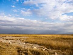 2018,Kenia, Ambroseli National Park