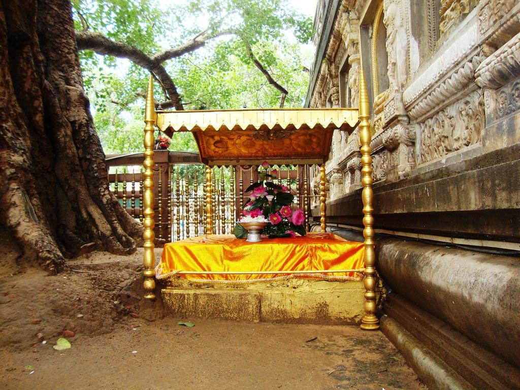 India Bodh Gaya 2011