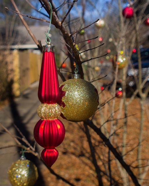 Ornamental shrubbery
