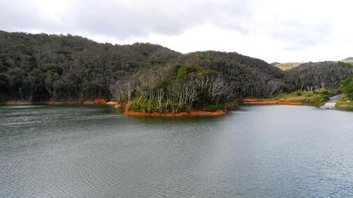 Ein See und ein mystischer Wald im Norden von Okinawa