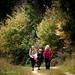 Hampshire in Autumn-19