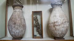 Ancient Egyptian Jars at the Egyptian Museum of Cairo اوانى فخارية فى المتحف المصرى بالقاهرة