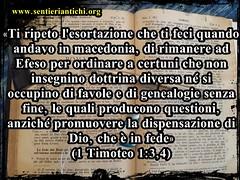 Non si deve permettere che si insegnino dottrine diverse da quelle che hanno insegnato Gesù e gli apostoli