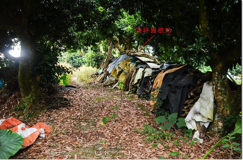 嘉義竹崎頂坪冠字谷(15)的土地調查局圖根點點位