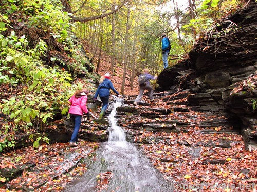 Scrambling up one of the falls in the upper gorge of Barnes Gully, Onanda Park near Canandaigua, New York
