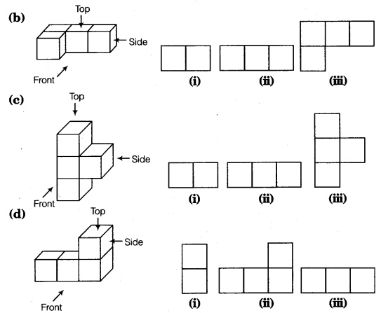 NCERT Solutions for Class 8 Maths Chapter 10 Visualising Solid Shapes 8