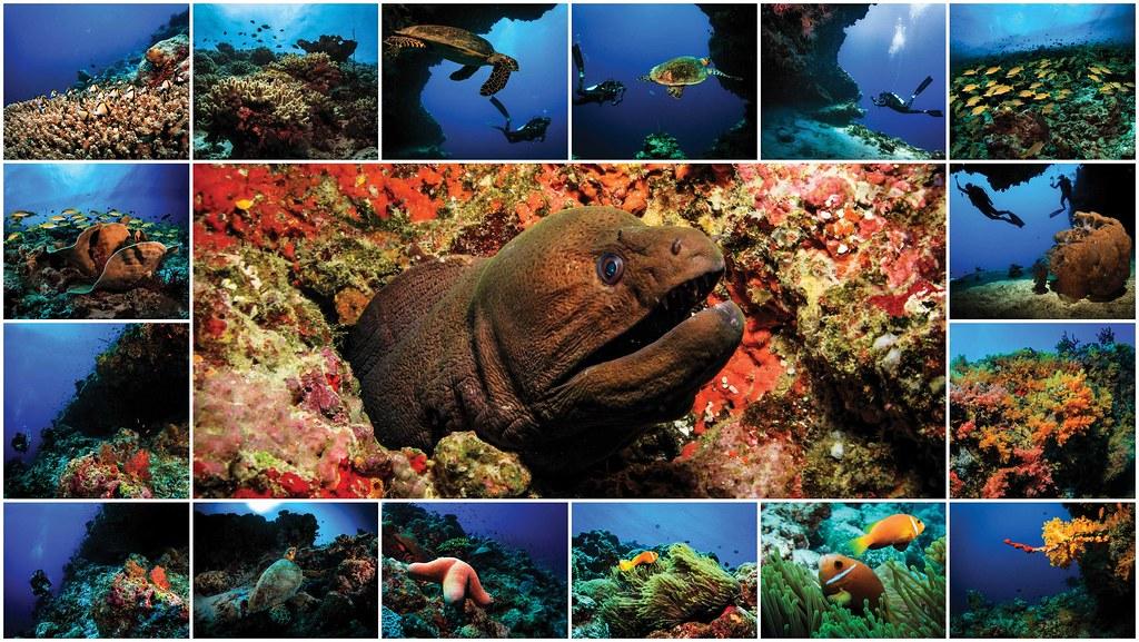 Malediwy Oblu 6