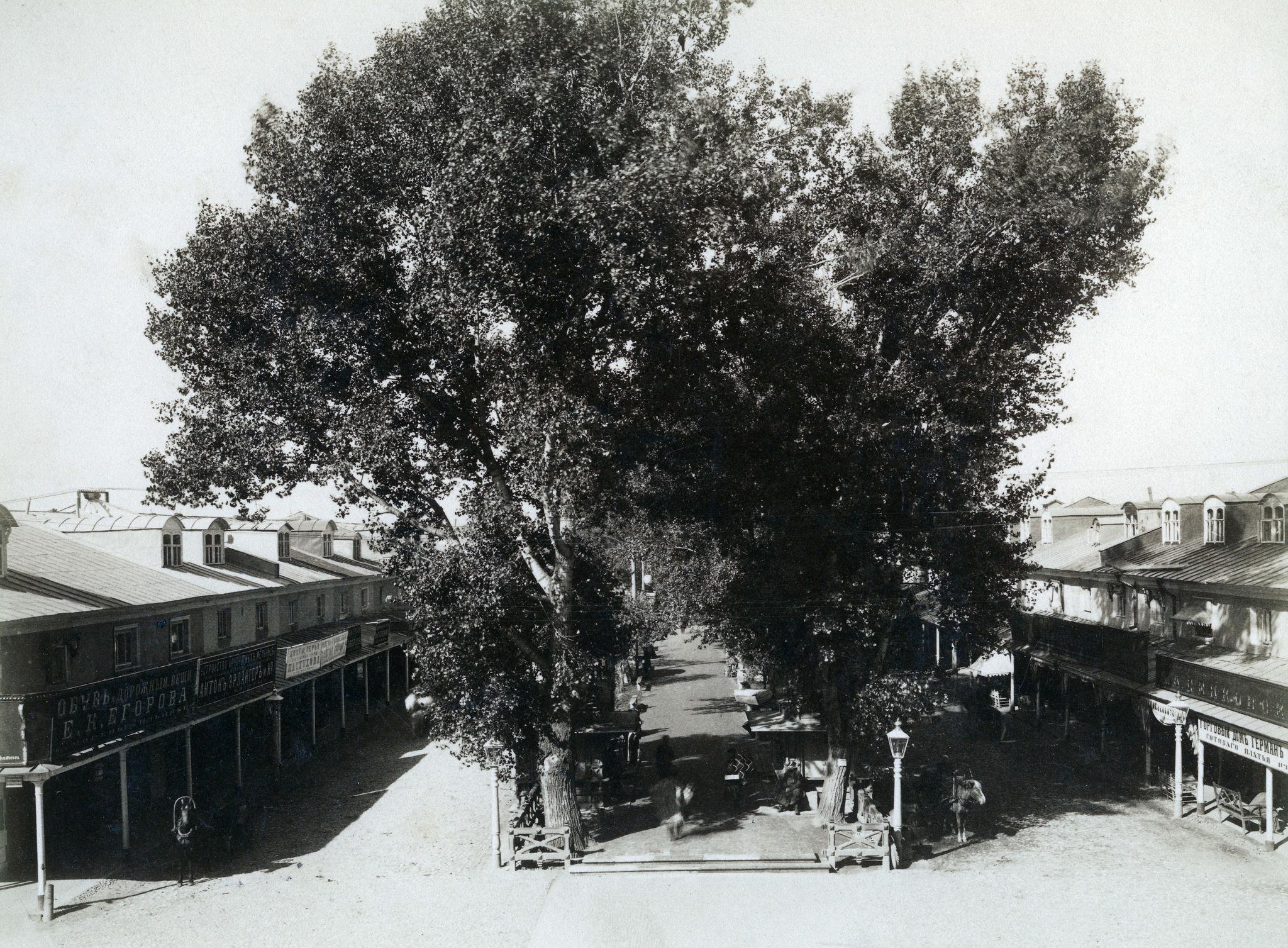 Бульвар от Главного ярмарочного дома к Спасскому староярмарочному собору