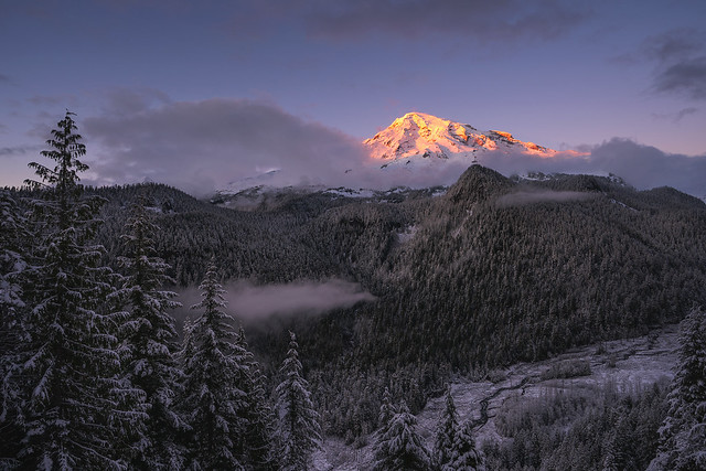 Rainier Above The Clouds [EXPLORED #3]