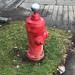Holiday hydrant...