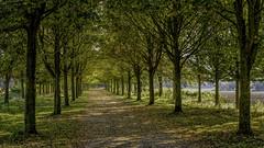 Au bout du chemin. - Photo of Camphin-en-Carembault