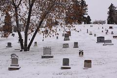 Cemetery scenes