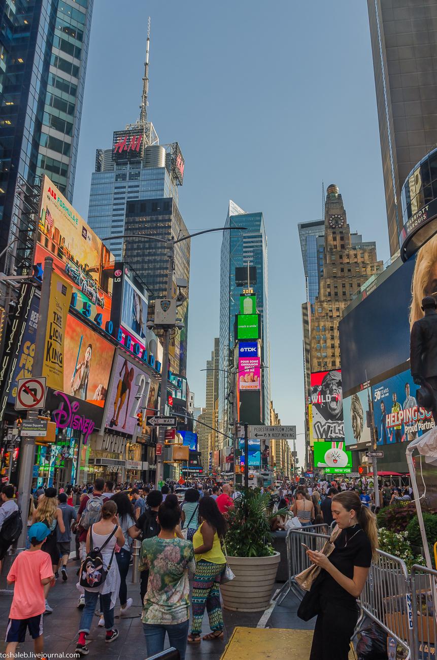 Нью-Йорк_Central Park_Times Square-43