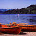 Rowboats, Lake Titisee