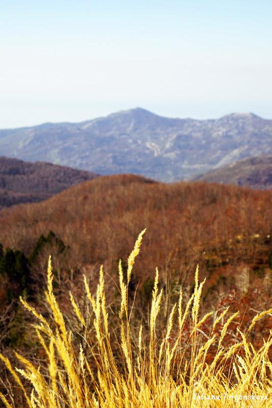 Пейзаж с обочины горной дороги, ведущей к Орьенскому седлу