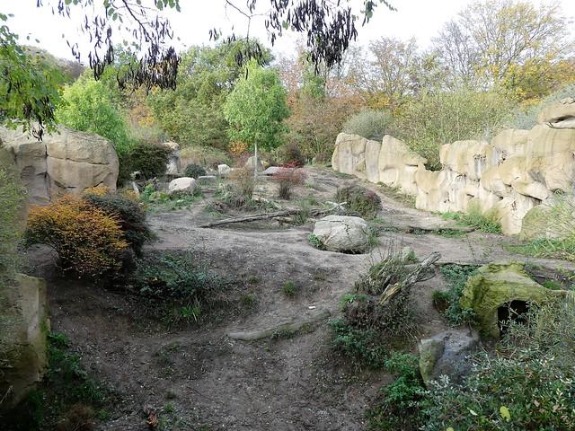 Zoo Osnabrück - Tüpfelhyänenanalage