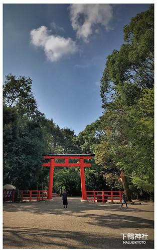 下鴨神社-14