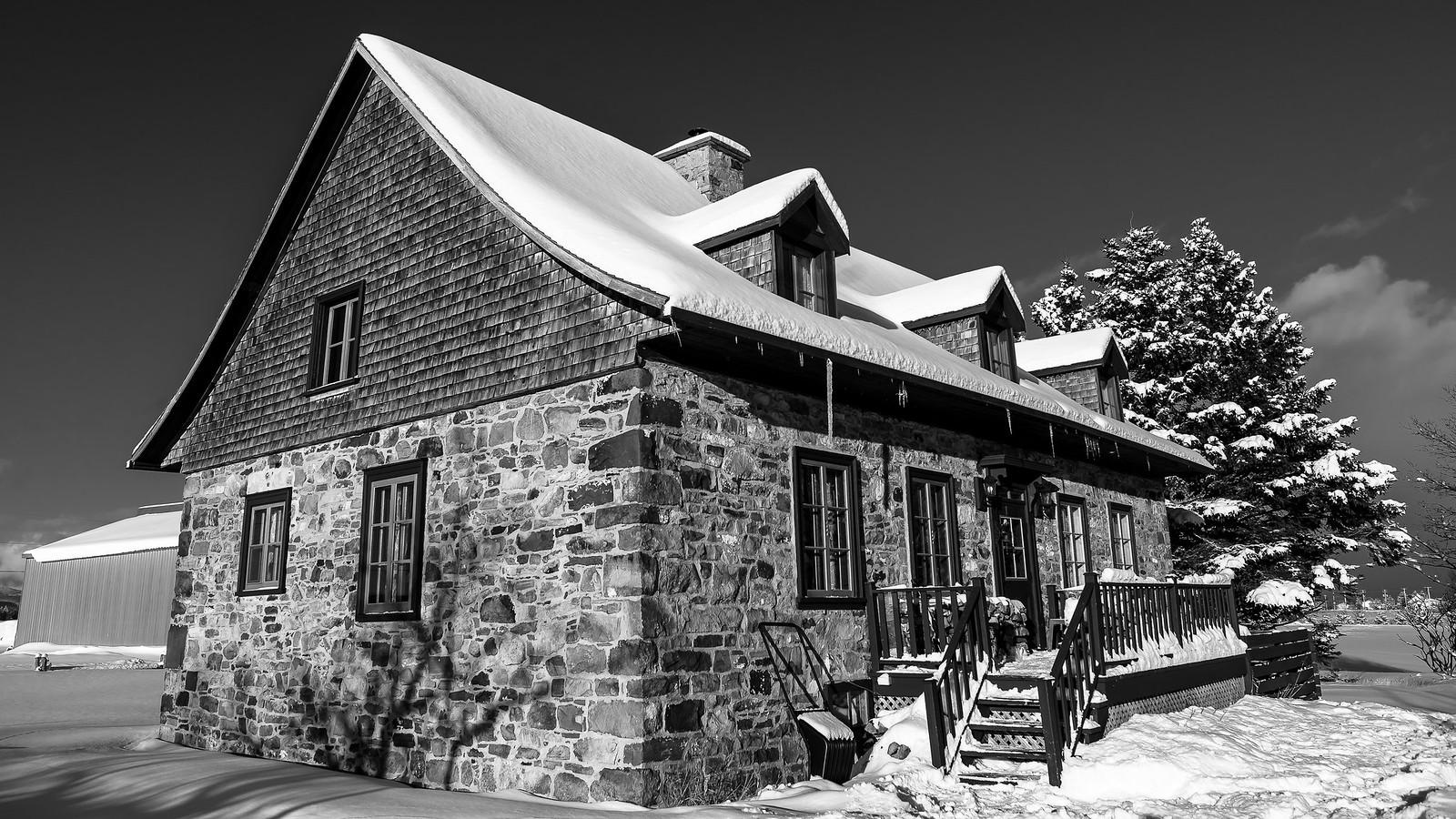 L'hiver en noir et blanc... 46178034672_27755ae968_h