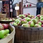 Thu, 09/20/2018 - 2:57pm - McIntosh Apples - Dougherty Orchard    NS