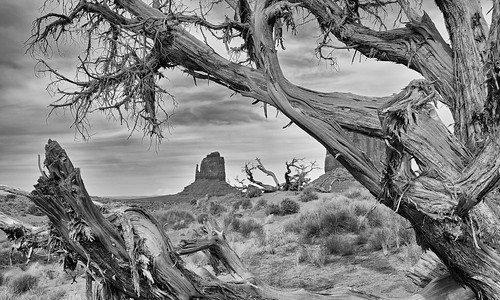 Monument Valley Impression in Black and White