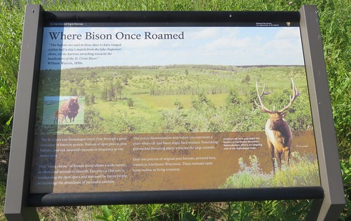 Where Bison Once Roamed Marker (Saint Croix National Scenic Riverway, Wisconsin)