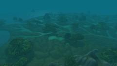 Wetlands - World of Warcraft (1)