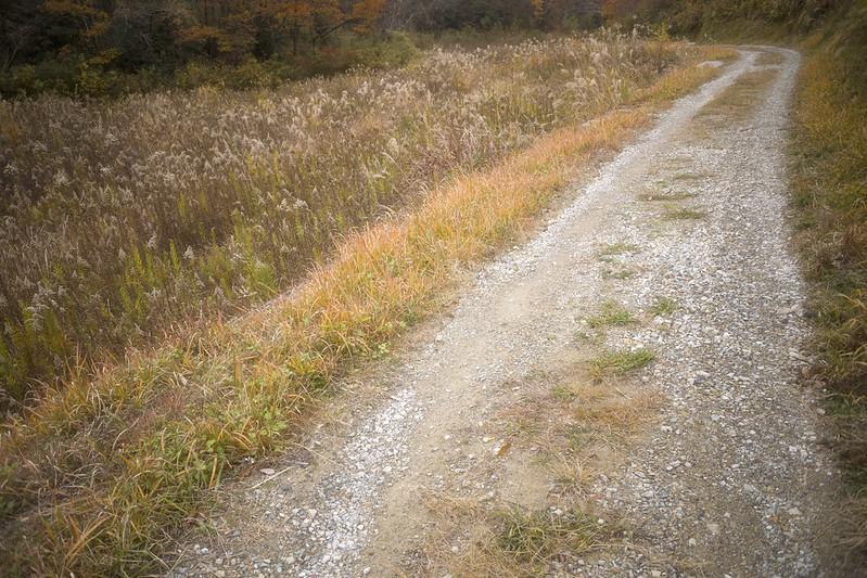 path #5