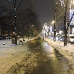 Bulevardul Aviatorilor, Bucharest