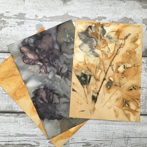 Eco printed paper packs for paper crafts