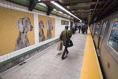 Reopening of 23 St (F, M) Station