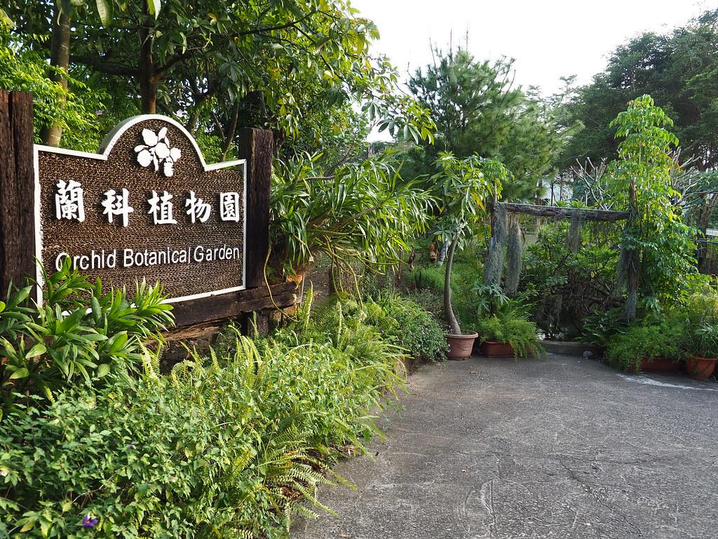 山上蘭科植物園 (1)