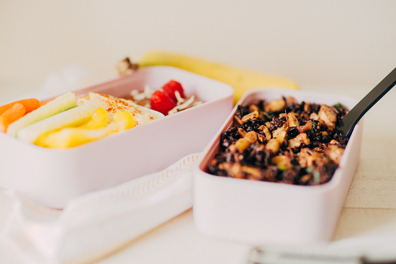 Airplane Friendly Vegan Bento Box
