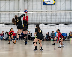 MVSA_Tournament_190316-5
