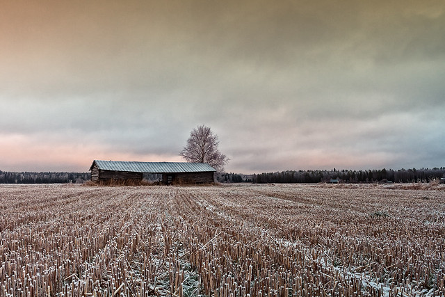 Old Barn At The End Of The Fields