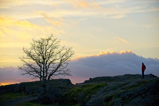 Solitude, Canon EOS 5D MARK IV, Sigma 150-600mm f/5-6.3 DG OS HSM | C