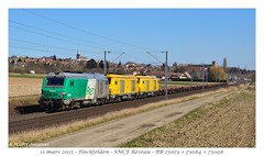 BB75073 Infra - Hochfelden - Photo of Altenheim