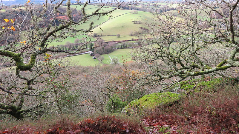 View from Wray Cleave Wood Tor