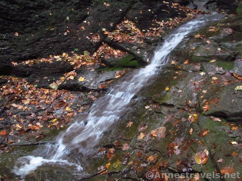 Part of the First Falls in Barnes Gully, Onanda Park in the Finger Lakes of New York