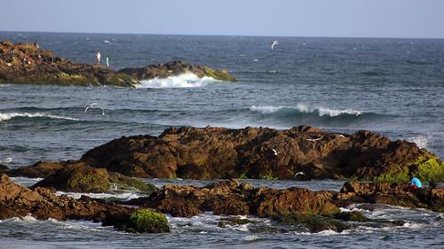 Historias de Surf / Marcio Thola.