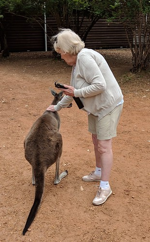 Locals at Donnelly River Village