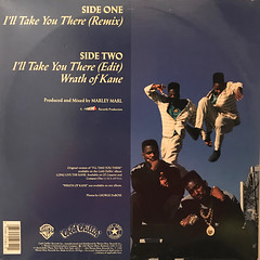 BIG DADDY KANE:I'LL TAKE YOU THERE(JACKET B)