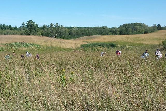 10 people in a grass field.