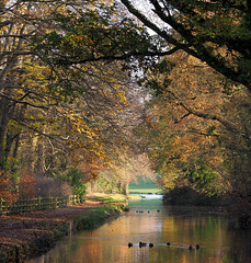 HolderStourbridge Canal